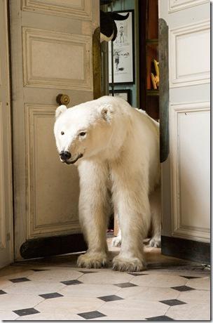 polarbear_voila-1stdibs
